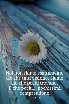 Notte a tutti... già... My Emotions, Feelings, Famous Phrases, Italian Quotes, Quotes About Everything, Heartfelt Quotes, Osho, My Mood, Wise Quotes