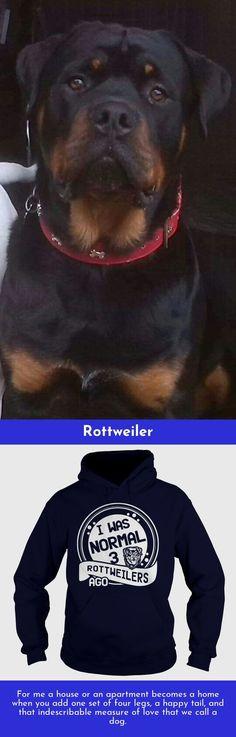 Rottweiler-hund-alu-video-schild-15x10 Bis 30 X 20 Cm-türschild-alarm-warnschild Produkte HeißEr Verkauf Haustierbedarf Hunde