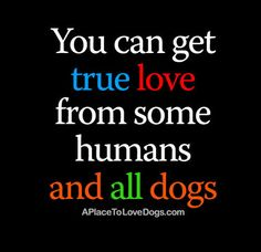 Rover 99 - True Love | Poster