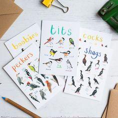 Set Of Five Illustrated Bird Pun Cards