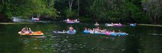 tubing at ginnie - a gainesville tradition