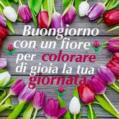Italian Quotes, Day For Night, Good Morning, Cristiani, Gif, Genere, Oscar Wilde, Gandhi, Smiley