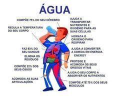 Fundamental para o corpo humano-água!