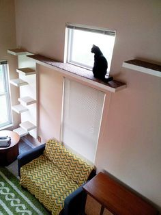 supplies needed to make a cat tower or cat condo Cool Cat Trees, Cool Cats, Bb Chat, Cat Walkway, Walkway Ideas, Cat House Diy, Cat Towers, Cat Playground, Cat Room
