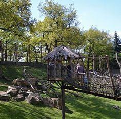 Czech Republic, Garden Bridge, Gazebo, Panda, Safari, Outdoor Structures, Summer, Travel, Africa