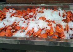 Lobsters at Woodman's of Essex, Essex, MA