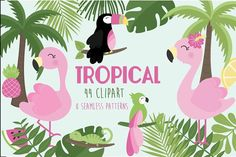 Tropical by Poppymoondesign on @creativemarket