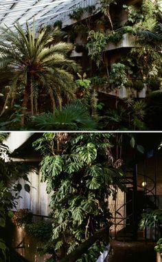 The Barbican Conservatory,Silk Street, London