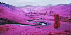 Richard Mosse's transcending landscapes. See more in our video interview with Jack Shainman Gallery. The Armory Show 2013.