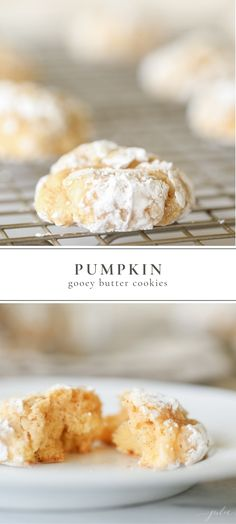 pumpkin gooey butter cookies are really easy to make. They're thick, soft and have just the right touch of pumpkin.These pumpkin gooey butter cookies are really easy to make. They're thick, soft and have just the right touch of pumpkin. Cake Mix Cookie Recipes, Best Cookie Recipes, Pumpkin Recipes, Cake Recipes, Köstliche Desserts, Dessert Recipes, Dinner Recipes, Health Desserts, Gooey Butter Cookies