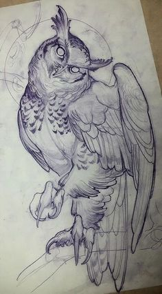 Идея для тату с совой, приподнимающей одно крыло