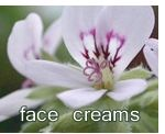 NATURAL CREAMS AND MOISTURISERS | FACE CARE | HANDMADE SKIN CARE PRODUCTS | NO SLS, CHEMICALS & PARABENS