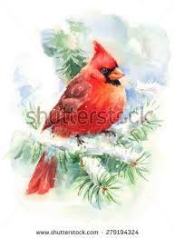 Image result for pinturas de cardenales