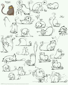 64 Trendy Drawing Animals Tips Character Design References Cartoon Drawings, Animal Drawings, Drawing Sketches, Cat Sketch, Drawing Cartoon Animals, Anime Drawing Books, Funny Sketches, Cartoon Cats, Draw Animals