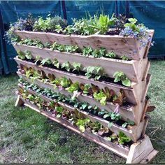 Make the best of small spaces and practice vertical gardening in containers you can make out of scrap lumber.