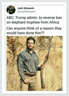 Because shooting defenseless animals are how Trumps' spawn can feel manly & like they're in the military, maybe Africa is they're own personal Vietnam...