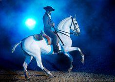 Oxidado and Pedro Torres, Feira Nacional do Cavalo, Golegã, Portugal, Lusitano Horses, National Horse Fair 2014