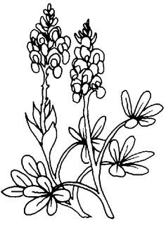 flower Page Printable Coloring Sheets | Free coloring pages for ...