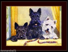 Print-Scottish-West-Highland-Terrier-Dog-Dogs-Puppy-Puppies-Poster-Art-Picture
