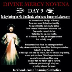 "Divine Mercy Novena #pinterest #divinemercy #divinemercy Day 9 - (Easter Saturday) - The souls who have become lukewarm. ""Today bring to Me the Souls who have become Lukewarm, and immerse them in the abyss of My mercy........