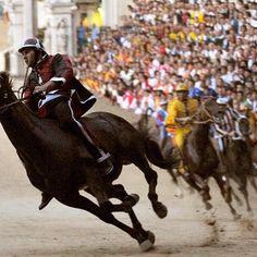 The famous Palio of Siena horse race #siena #palio a wonderful historic event in Piazza del Campo #ilovetuscany #tuscanyexperience #wonderful #art #chiantilife #igers #igerssiena #igersitalia #igerschianti #tuscany #toscana #instapic #instacool #instagood #instamood #instadaily #picoftheday #volgotoscana #volgoitalia