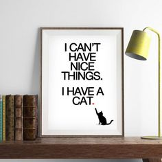 There's no such thing as too much cat merchandise.