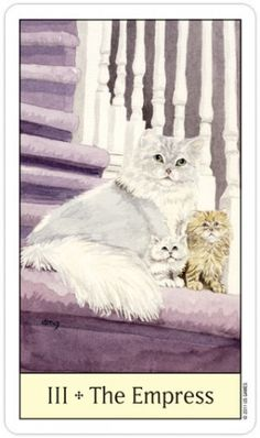 Cat Tarot Decks are hugely popular and available in a variety of illustrative styles. Cat tarot cards make a beautiful gift for any cat lover. Tarot Cards Major Arcana, The Hierophant, Oracle Tarot, The Empress, Tarot Readers, Deck Of Cards, Card Deck, Tarot Decks, Cat Art