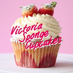 Sponge Cake Cupcakes topped with freshly whipped cream and strawberries.