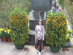 Oranges, oranges, oranges... HKG :-) last year