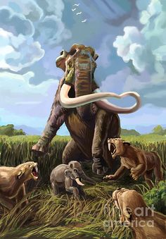 Columbian Mammoth And Sabertoothed Cats by Spencer Sutton
