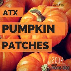 Austin Area Pumpkin Patches 2014 | Austin Moms Blog
