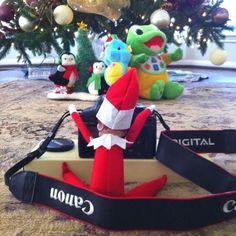 Getting Ready For The Christmas Card - Elf On The Shelf Ideas - Photos