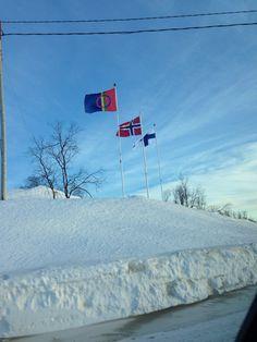 Samisk og norsk flagg