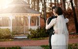Let Avon Old Farms Hotel's blend of the charm of a historic country inn with the state-of-the-art facilities help you create the perfect Connecticut wedding. Old Farm, Hotel S, Connecticut, Farms, Avon, Wedding Venues, This Is Us, Weddings, Country
