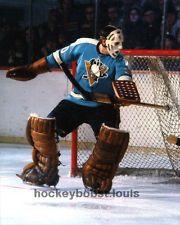 Les Binkley - Pittsburgh Penguins Hockey Goalie, Hockey Games, Hockey Players, Nhl Pittsburgh Penguins, Pittsburgh City, Hockey Room, Goalie Mask, Sports Fanatics, Vancouver Canucks