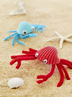 tinker with children unusual spider shell felt – Crafts for Teens - Kinder Summer Crafts For Kids, Summer Kids, Crafts For Teens, Diy For Kids, Kids Crafts, Diy And Crafts, Craft Projects, Arts And Crafts, Seashell Crafts