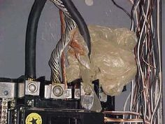 This is what was found inside a 200-amp electrical panel: a plastic shopping bag wrapped around the service-entrance cables.   Photo: Dave Kent | thisoldhouse.com | from Home Inspection Nightmares II
