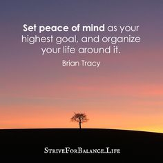 Set peace of mind as your highest goal, and organize your life around it.   ~Brian Tracy