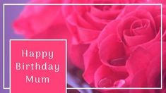 A background video of pink roses with a pink text box displaying a birthday message. Birthday Cards For Mom, Birthday Messages, Mom Birthday, Pink Roses, Display, Templates, Box, Creative, Flowers