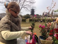Flower arranging in gale force winds with a picturesque temple in the bg, daily life in Japan