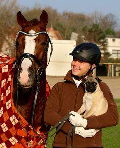 Nicht ohne meinen Mops! Ponyreiter Lasse Johannisson liebt nicht nur Pferde... Mehr über den Mann mit den Möpsen auf: www.kn-online.de/reiten  Foto Steffi Michalowski
