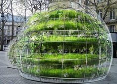 To celebrate the popularity of houseplants in Paris, designer Amaury Gallon was sponsored by the Dutch Flower Council to create unique bubble gardens that offer passersby a bit of respite from their concrete environments.
