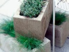 Brick planters - great recycling.
