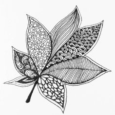 Best 12 Free printable Fall coloring pages for use in your classroom or home from PrimaryGames. Doodle Art Drawing, Leaf Drawing, Zentangle Drawings, Mandala Drawing, Daily Drawing, Zentangles, Easy Drawings Sketches, Pencil Art Drawings, Cool Art Drawings