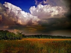 EarthScience1Stuff: Cumulonimbus Clouds