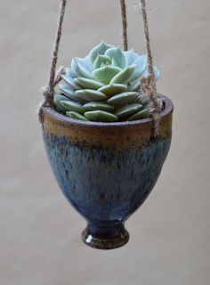 Small Hanging Succulent Planter
