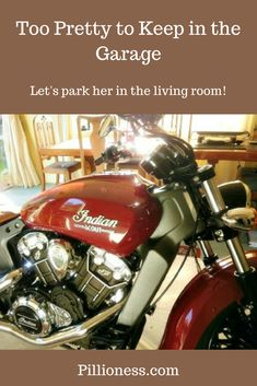 When we're not roaring along the open roads on the Indian Scout, there's only one place for her . the living room, of course. Best Motorbike, Open Roads, Motorcycle Exhaust, Indian Scout, New Motorcycles, In The Flesh, Exhausted, Living Room, Cars