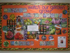 Gardening Ideas For Schools elementary school reading garden bing images School Garden Bulletin Board