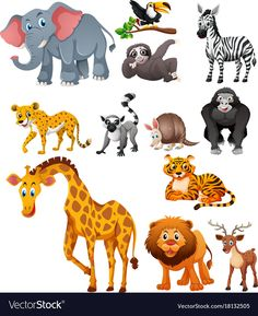 Different types of wild animals Royalty . - Different types of wild animals Royalty Free Vector Image - Animal Pictures For Kids, Wild Animals Pictures, Cute Wild Animals, Animals For Kids, Wild Animals Drawing, Animal Drawings, Wild Animal Wallpaper, Mother And Baby Animals, Wild Animals Photography
