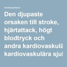 Den djupaste orsaken till stroke, hjärtattack, högt blodtryck och andra kardiovaskulära sjukdomar   Martinusportal.se